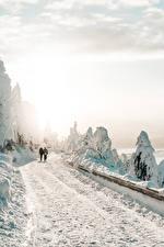Фото Зимние Дороги Снег 2 Ходьба Деревья Природа
