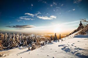 Фотографии Зимние Пейзаж Леса Небо Снег Ели Дерево Природа
