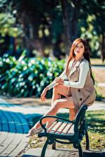 Картинки Азиаты Размытый фон Скамья Сидя Ноги Шатенка молодые женщины