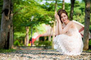 Фотографии Азиатки Боке Позирует Платья Рука Шатенки Сидящие девушка