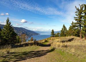 Обои для рабочего стола Канада Речка Берег Осенние Ели Kelowna British Columbia Природа