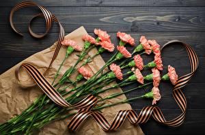 Фотографии Гвоздики День Победы Ленточка Цветы