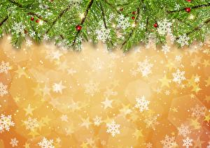 Фотографии Новый год Снежинки Ветки