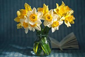 Картинка Вблизи Нарциссы Вазе цветок
