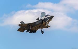 Картинка Самолеты Истребители Американские Lightning F-35B Авиация