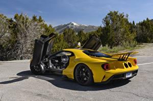 Фото Ford Желтая Металлический Дверь Ford GT, 2017 машина