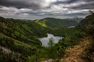 Картинки Лес Гора Озеро Австрия Langbathseen Природа