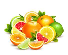Картинка Фрукты Цитрусовые Грейпфрут Лайм Лимоны Векторная графика Белым фоном Еда