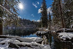 Фотографии Озеро Зимние Швейцария Солнца Снега Lake Cresta