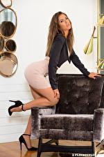 Обои Playboy Gia Ramey-Gay Кресло Позирует Ног Красивая Платья Шатенки Смотрит девушка