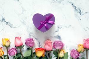 Фото Роза День всех влюблённых Бантики Коробки Подарок Сердечко цветок