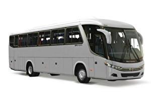 Обои Scania Автобус Белый фон Серые Сбоку Marcopolo Viaggio, 1050, K360 (G7) автомобиль