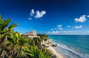 Фотографии Небо Побережье Мексика Облачно Пальма Tulum, Quintana Roo Природа