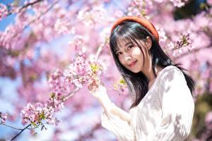 Фотографии Весенние Цветущие деревья Азиаты Ветки Брюнетка Милый Улыбка Смотрят Берет молодая женщина Природа