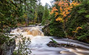 Фотография Штаты Парк Осенние Водопады Дерево Amnicon Falls State Park Природа