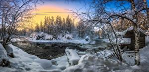 Картинка Зимние Леса Речка Финляндия Снега Дерева Kuusamo, River Kitkajoki Природа
