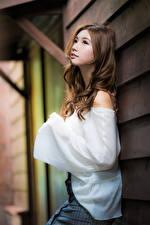 Картинки Азиаты Позирует Блузка Шатенки Девушки