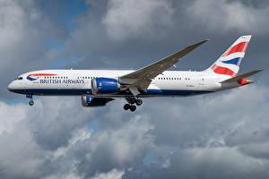 Фотография Боинг Самолеты Пассажирские Самолеты Сбоку British Airways, 787-8 Авиация