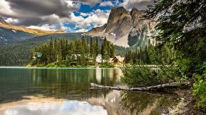 Фотография Канада Озеро Гора Лес Пейзаж Отражении Облачно Yoho National Park, Emerald Lake Lodge Природа