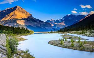 Картинки Канада Гора Река Небо Пейзаж Дерева Alberta, Jasper National Park