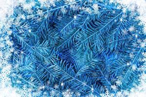 Фото Рождество На ветке Снежинки