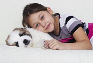 Обои для рабочего стола Собака Девочка Смотрит Щенки ребёнок Животные