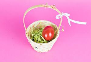 Фотография Пасха Цветной фон Корзина Яйцо Бантики Пища