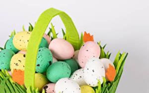 Фотография Пасха Серый фон Яйца Разноцветные Пища