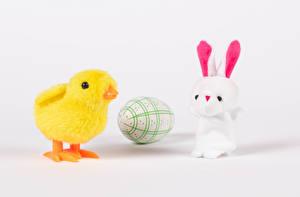 Фотографии Пасха Кролик Птенец курицы Сером фоне Яйцо