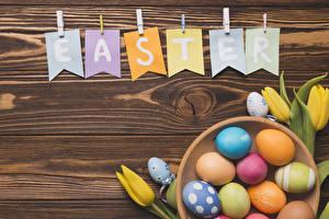 Обои Пасха Тюльпан Доски Слова Английская Яйцо Разноцветные Пища Цветы