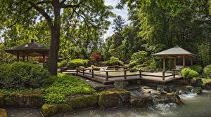 Фотография Германия Сады Пруд Камень Дизайна Кустов Дерево Мха Augsburg Botanical Garden Природа