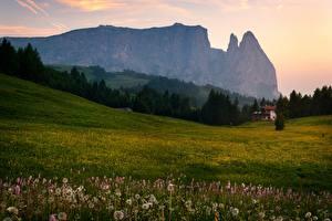 Фотография Италия Гора Луга Лето Вечер Альп Дерево Природа