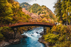 Картинка Япония Осенние Лес Речка Мост Shinkyo Bridge Nikko Daiya River Природа