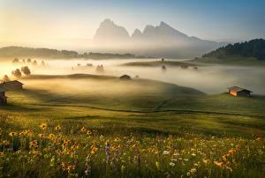 Фотография Утро Горы Италия Луга Туман Альп Трава Dolomites Природа