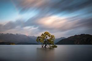 Картинка Новая Зеландия Горы Вода Деревья Облачно Wanaka, Otago Природа