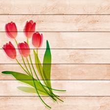 Обои Рисованные Тюльпаны Доски Шаблон поздравительной открытки Цветы