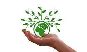 Картинки Планета Растения Рука Земля Белый фон