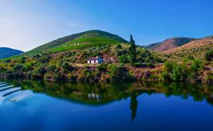 Обои Португалия Речка Поля Холмы Дерево Отражение Douro River
