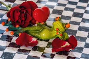 Обои для рабочего стола Роза Лягушка Сердечко Лепестков Бордовая Цветы