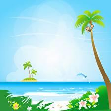 Фотография Море Векторная графика Пальмы Солнца Природа