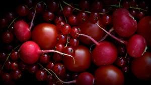Картинки Помидоры Смородина Редис Красный Еда