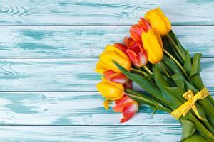 Фото Тюльпаны Букеты Доски Шаблон поздравительной открытки цветок