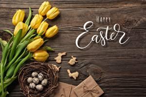 Картинка Тюльпаны Пасха Яйца Английская Текст Гнездо Цветы