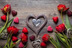 Картинка Тюльпан День всех влюблённых Сердечко цветок