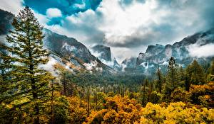 Фото Штаты Лес Осенние Пейзаж Дерево Йосемити Облачно Калифорнии Долина Sierra Nevada Природа