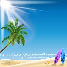 Картинки Векторная графика Море Солнца Пляжа Пальма Природа