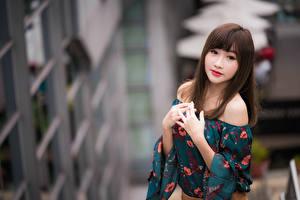 Обои Азиатки Размытый фон Руки Взгляд Милый Шатенки Девушки