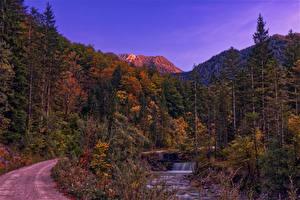 Фотография Австрия Гора Леса Осенние Водопады Gmunden Природа