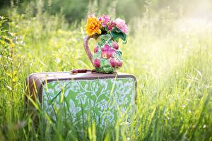 Картинка Букет Траве Чемоданом Вазе Боке цветок