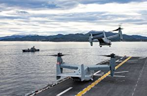 Картинка Конвертоплан Взлетают US NAVY, Norway, MV-22B Osprey, US Marine Corps, HNoMS Storm (P961), USS Iwo Jima (LHD 7) Армия
